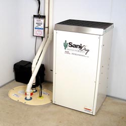 An ENERGY STAR® Rated basement dehumidifier installed in a home in Baltimore