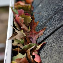 Clogged gutters filled with fall leaves  in Landenberg